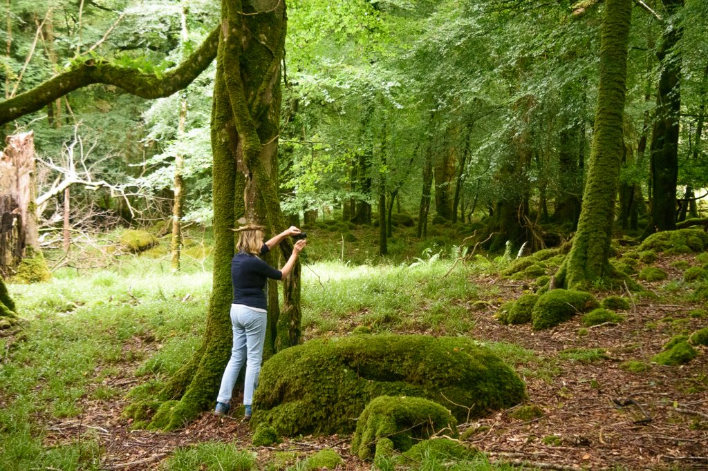 Finally lost it - Irish Photo Fairy Queen